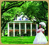 Tours by Isabelle Plantation Tours
